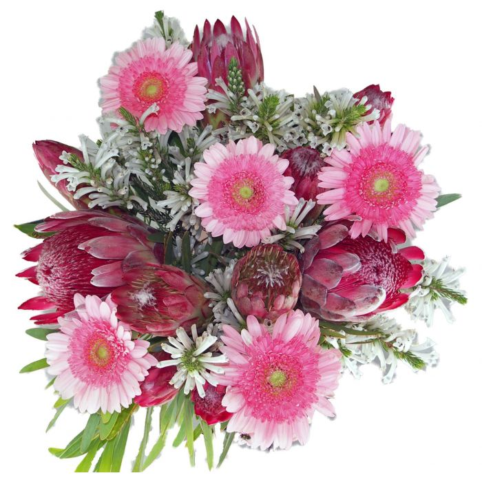 Protea and Gerbera Bouquet