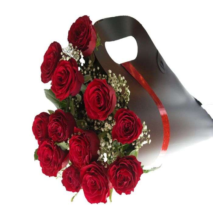 Red Roses Carry Pack Presentation