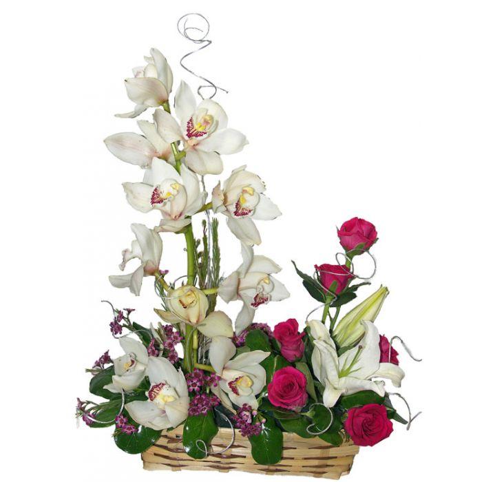Florist Orchid Basket
