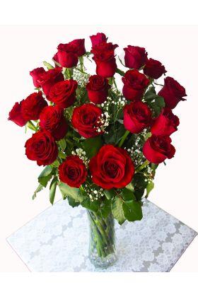 24 Red Roses vase Valentine